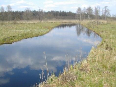 A transborder river.