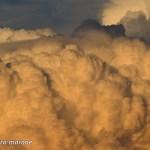 """Dantebus - """"Tra le nuvole"""" Chiara Marone"""