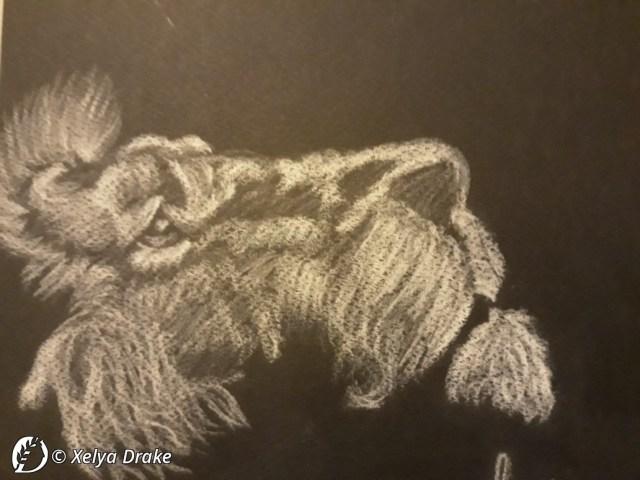 """Dantebus - """"The lion"""" Xelya Drake"""