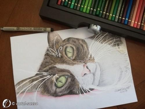 """Dantebus """"Cat"""" Carol Sasso"""