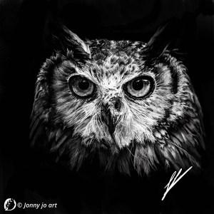 """Dantebus - """"Gufo iper realistico"""" Jonny jo art"""