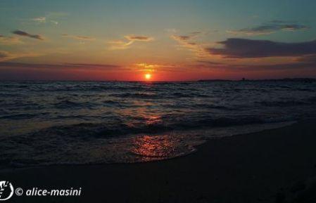 Dantebus - Alice Masini - Sunset