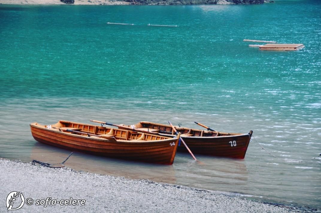 Dantebus - Sofia Celere - Lago di Brais