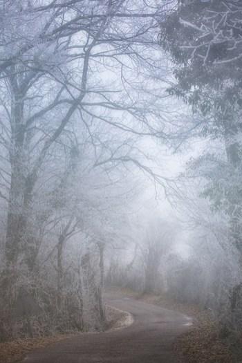 hivers-2013-800
