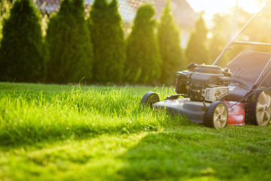 recommended lawn mowing heights