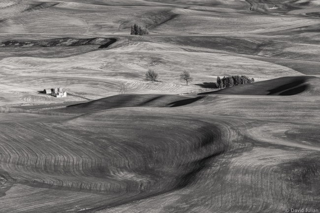 Farmland patterns, Palouse