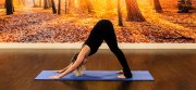 8 Yoga Poses to Reduce Stress & Improve Flexibility