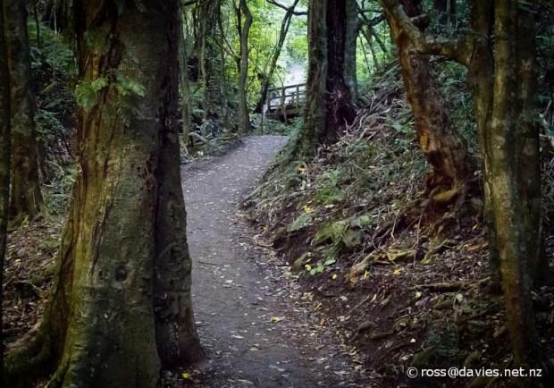 Colonial Knob Walkway, Porirua