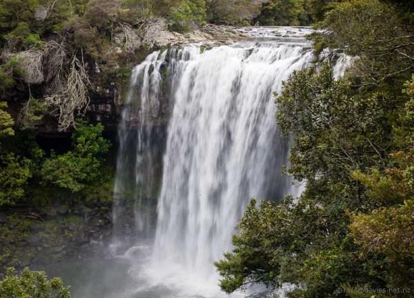 Rainbow Falls Kerikeri