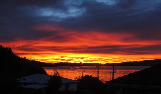 Sunrise Otago Harbour