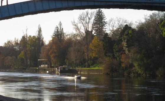 Waikato River at Hamilton