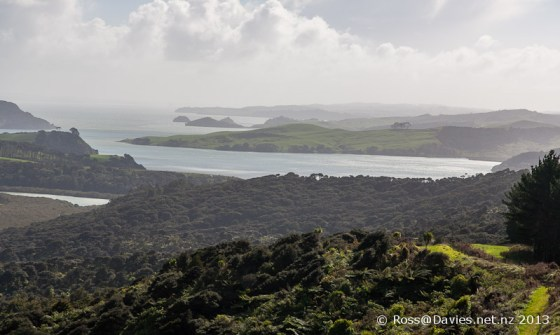 Atiu Creek Regional Park near Kaipara Harbour