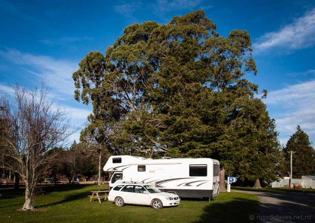 Mt Somers Domain camp