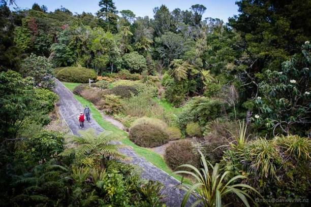 Pukeiti Gardens Taranaki