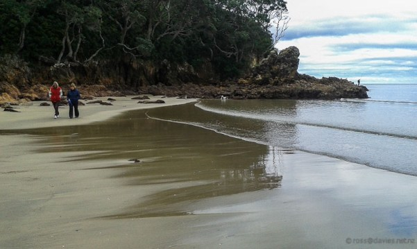 North end of Waihi Beach