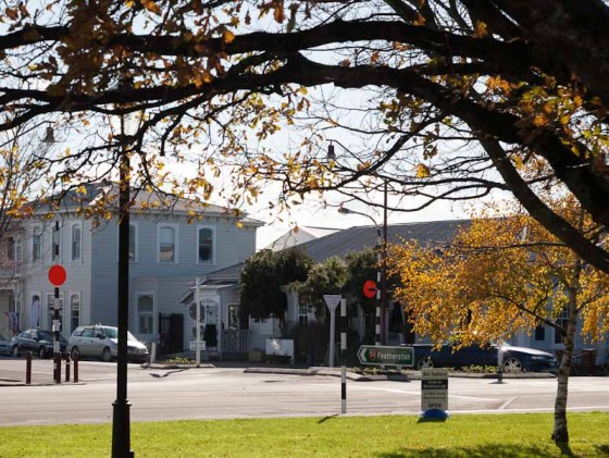 Martinborough from The Square