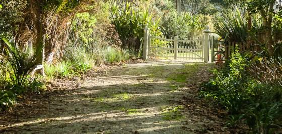 Wenderholm Regional Park Auckland