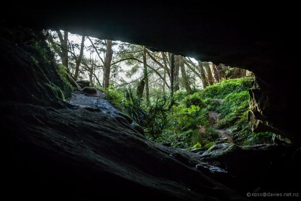 Waipu cave entrance