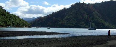 Whatamango Bay, Queen Charlotte Sound