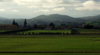 Taieri Plains from Wingatui