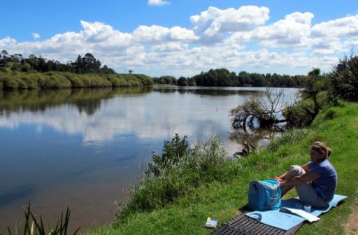 Waikato River at Tirau