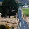 Townsleys Road Dunedin