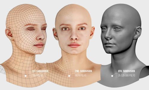 the 1st, 2nd, and 8th subdivisions of a female's face