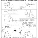 Programmer in The Zone