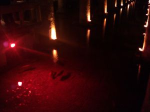Fish swim in the eerie light of the cistern