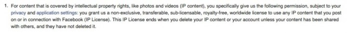 FB IP Terms