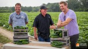 locally sourced produce for Southeastern Grocers