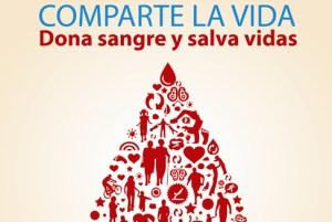 Cultura de donación sanguínea, médula ósea y órganos