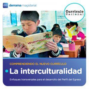 Enfoques transversales para el Perfil de Egreso: La interculturalidad