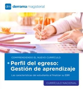 Comprendiendo el Currículo: Gestión del aprendizaje