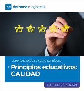 Comprendiendo el Currículo: Principios Educativos-Calidad