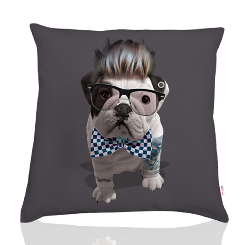 Coussin-chien-téo-jasmin-hipster-gris