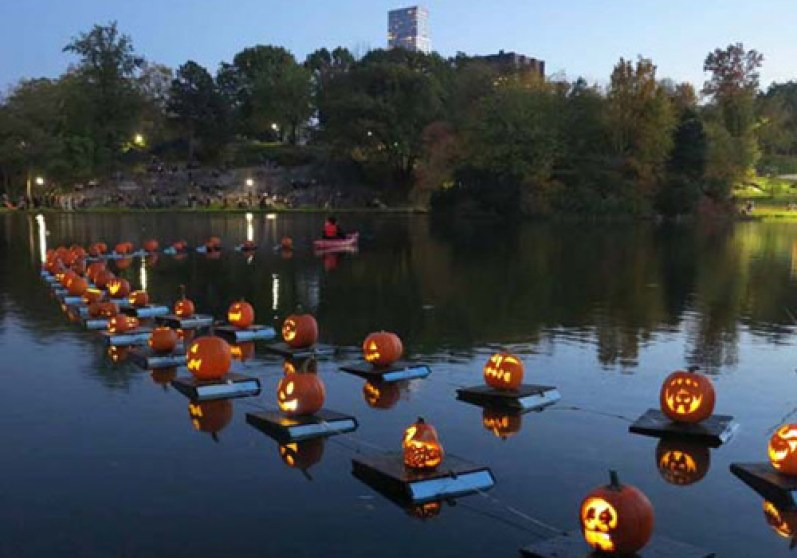 pumpkin-flotilla-night