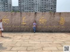 Joy Ge – Flat World Project 2020 7