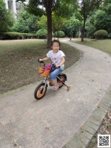 Lisa Zhao – Flat World Project 2020 5