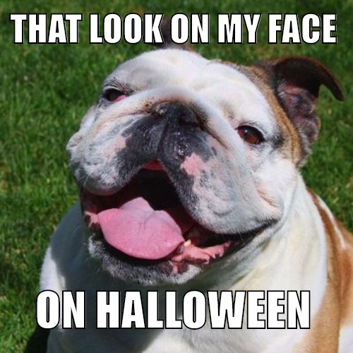 Happy Halloween from Diamond Head Living Property Management