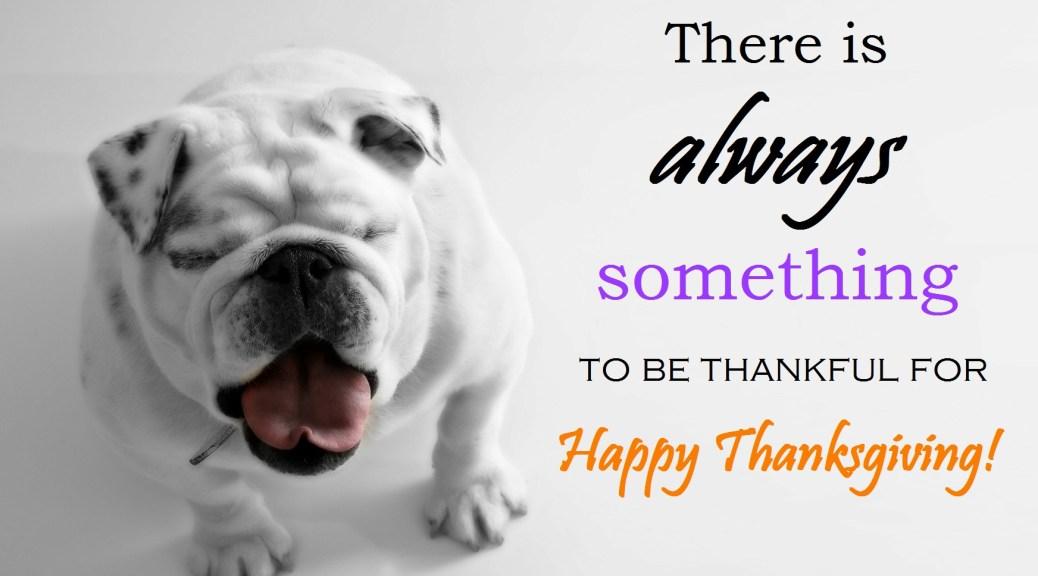happy-thanksgiving from Diamond Head Living LLC