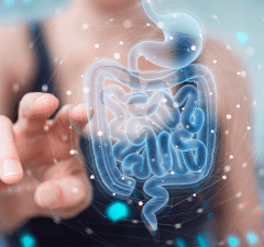 microbiota na nutrição