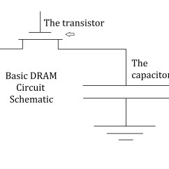 Difference Between Circuit And Wiring Diagrams Labeled Diagram Of A Chicken Dynamic Ram 19 Images