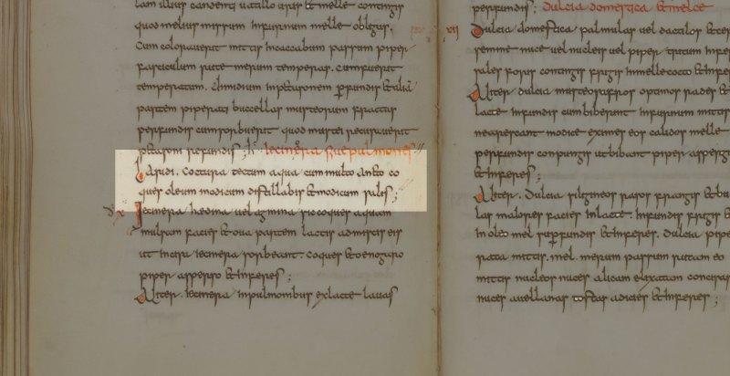 Apicius, De re culinaria Libri I-IX, Laridi coctura, Manuscript