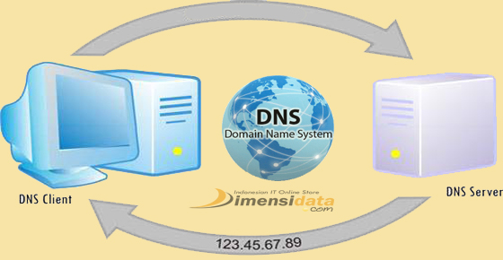how to add dns server in linux