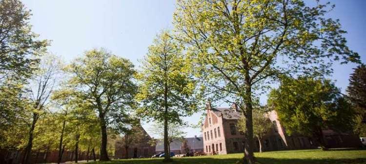Sommerudflugt: 7 gode spisesteder udenfor Aarhus