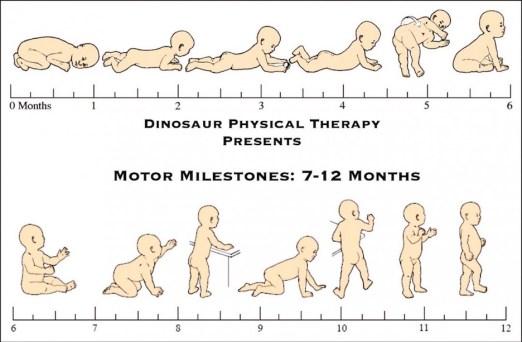 Motor Milestones 7-12