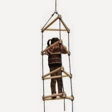 apraxia climbing ladder
