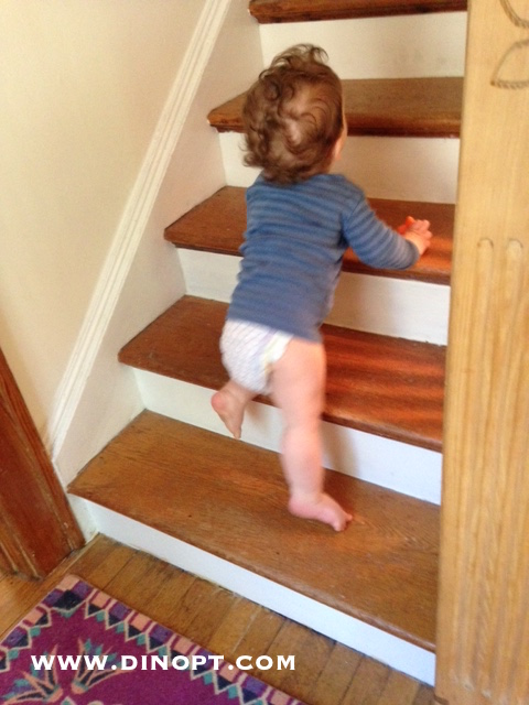 Merveilleux Baby Crawling Stairs Stair Climbing