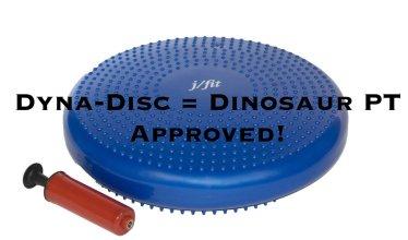 dyna disc
